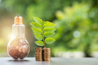 lightbulb with coins inside next to stack of coins with plant growing out of them